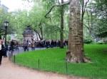 Madison Square Park #1