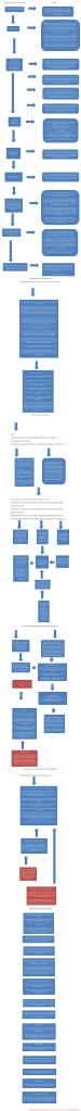 Browning--DGTLSU Flow Chart (2.0)